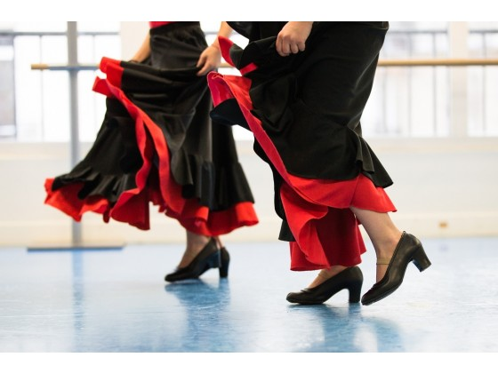 Danse Flamenco Adultes