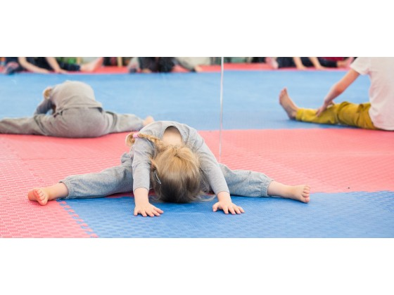 Judo Initiation 4/6 ans
