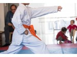 Judo Initiation 6/8 ans